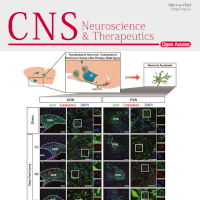 cns-2019-25-issue-cover